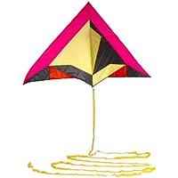 風ライダーDelta Kite