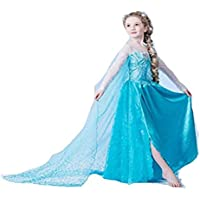Frozen Princess Elsa Dress Little Girl's Dress Outfit Party Dress Cosplay Costume Sequins Embrodery Mesh Dress (4-5 Years)