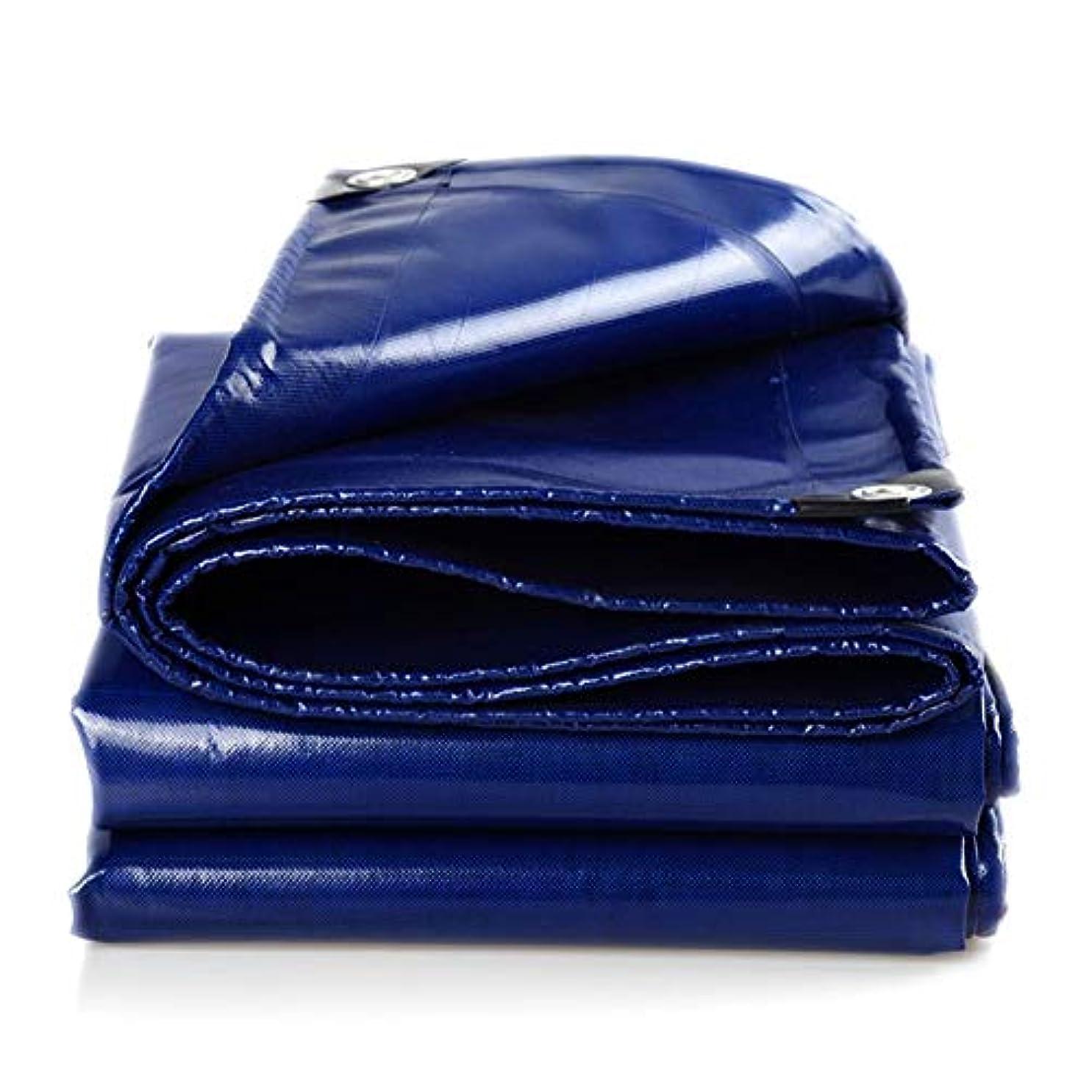 年血まみれのベスビオ山防水シートリノリウム 丈夫な防水ターポリン、高強度絹キャンバス、屋外キャンバス、両面防水、厚さ0.6 Mm、平方メートル当たりの重量400 G ZHANGQIANG (色 : 青, サイズ さいず : 3*4m)