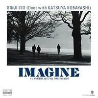 IMAGIME (MEG-CD)