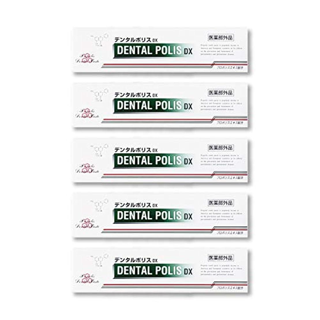 重大磁気争うデンタルポリスDX  80g   5本セット 医薬部外品  歯みがき