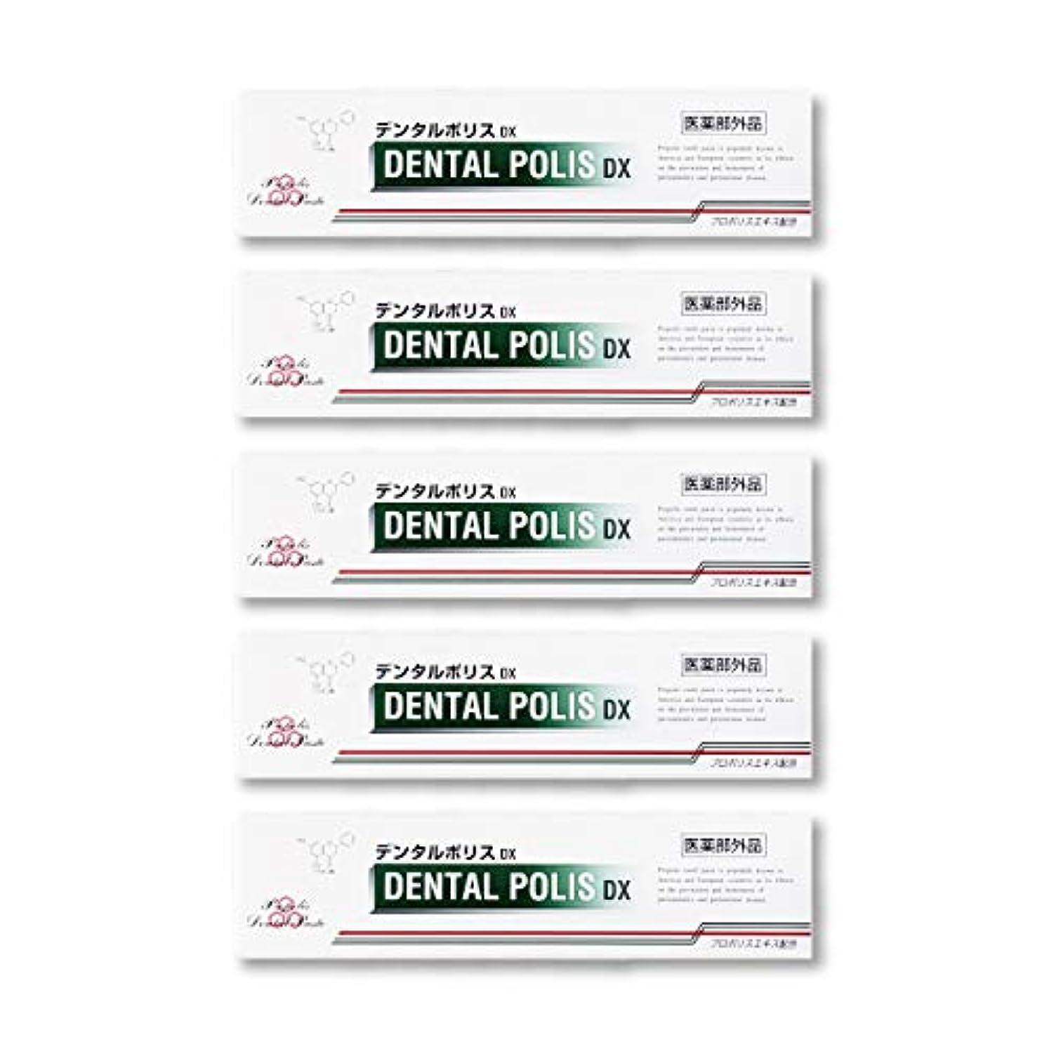 広まった模索二度デンタルポリスDX  80g   5本セット 医薬部外品  歯みがき