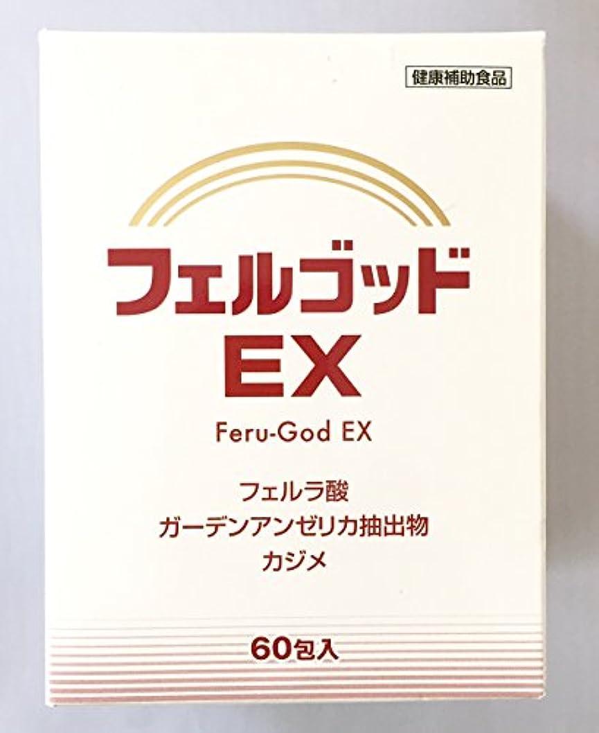 クロール何故なのこするフェルゴッドEX 2g×60包×2箱セット