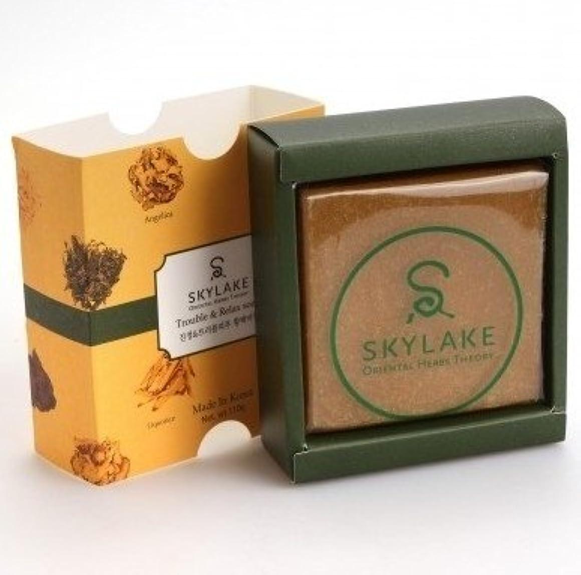 ぬれた野心的書き込み[1+1]ハヌルホス[Skylake] 漢方アロマ石鹸Oriental Herbs Theory Soap (肌荒れ肌用)
