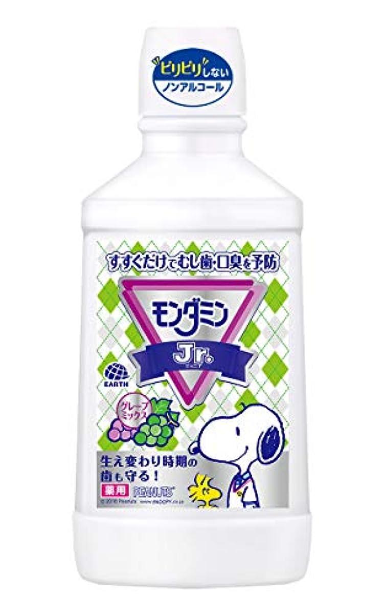 印象的反論少ない【医薬部外品】モンダミンJr. グレープミックス味 子供用 [600mL]