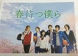 【映画パンフレット】春待つ僕ら