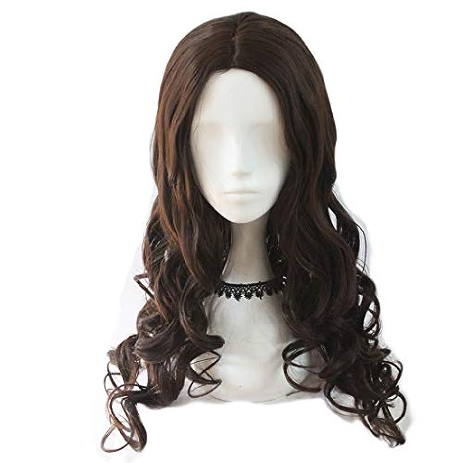 一族許容できる笑いJIANFU レディース ウィッグ コスプレ 長い 巻き髪 ビッグ ウェーブ 耐熱 ウィッグ (Color : Dark brown)