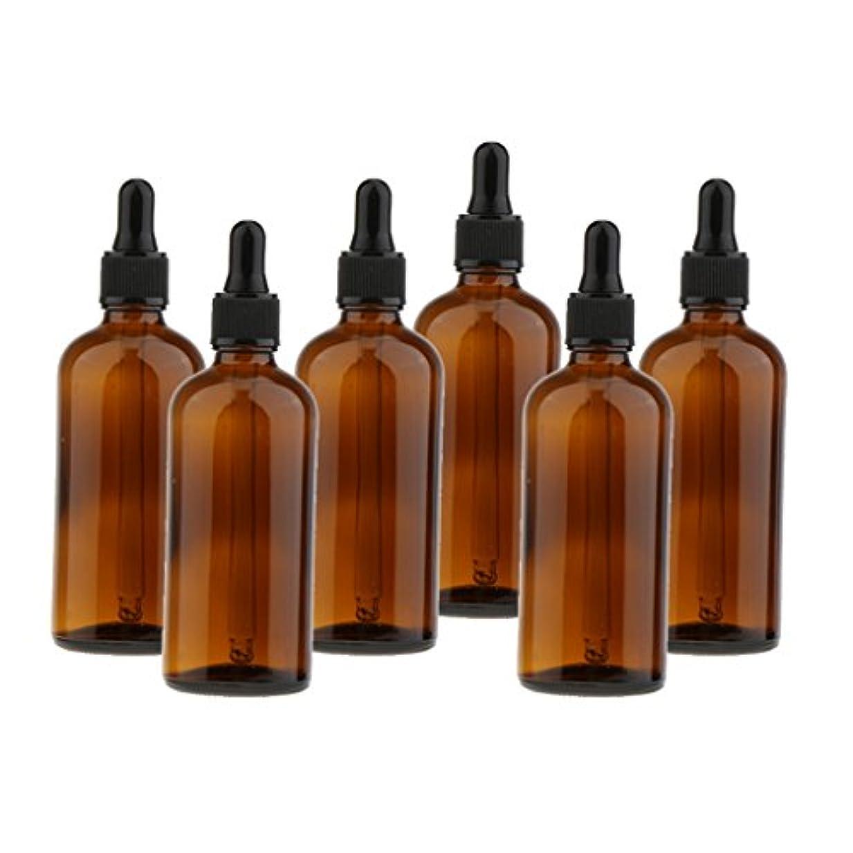 冷蔵庫東部補充ガラスボトル スクイズボトル ドロッパーボトル 遮光ピン 詰替え容器 精油 香水 サンプルボトル 6個セット - 100ml