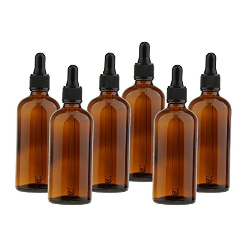 公証書貢献chiwanji ガラスボトル スクイズボトル ドロッパーボトル 遮光ピン 詰替え容器 精油 香水 サンプルボトル 6個セット - 100ml