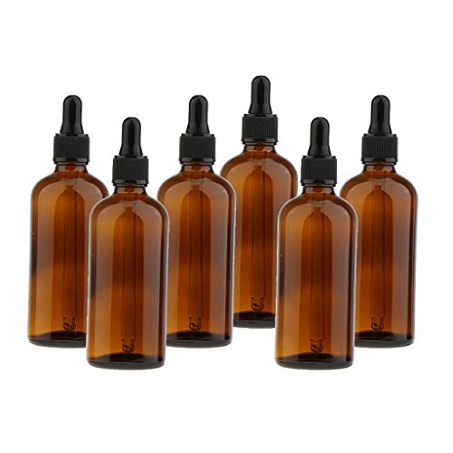 ユーモアアーティキュレーションアーティキュレーションガラスボトル スクイズボトル ドロッパーボトル 遮光ピン 詰替え容器 精油 香水 サンプルボトル 6個セット - 100ml