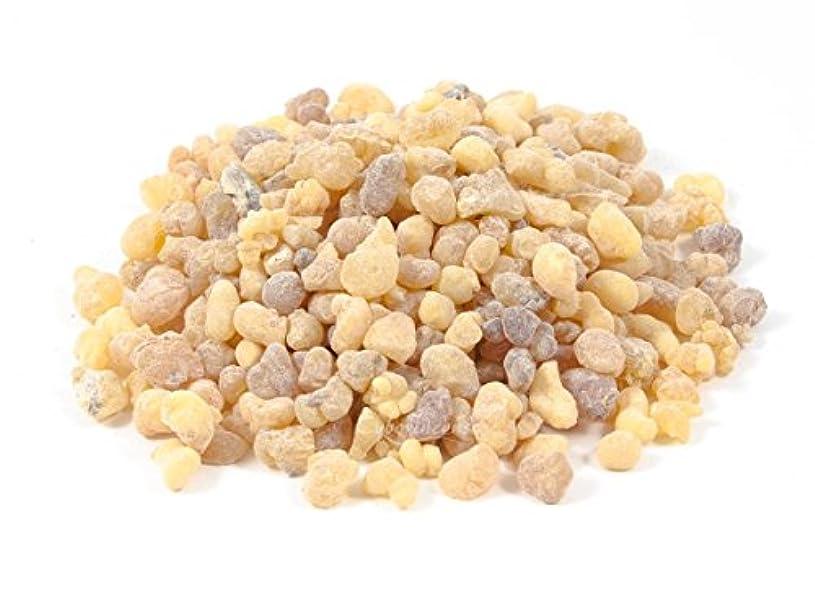 ファンツインプロポーショナル有機自然Frankincense樹脂Tears Gumプレミアム天然Incense Rock 30オンス= 840 GM byベツレヘムギフトTM