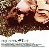 ビョークの「ネズの木」~ グリム童話より [DVD]