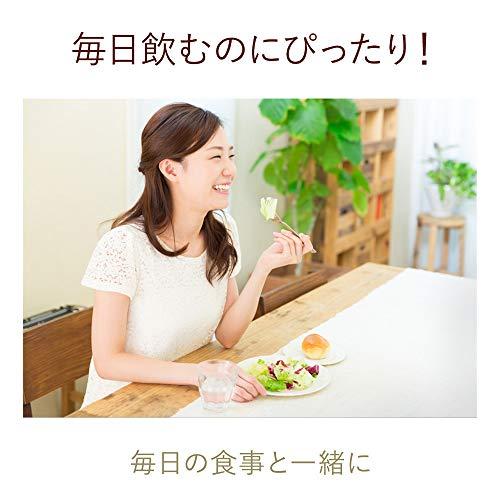 爽健美茶 健康素材の麦茶 お茶 ぺットボトル 600ml×24本