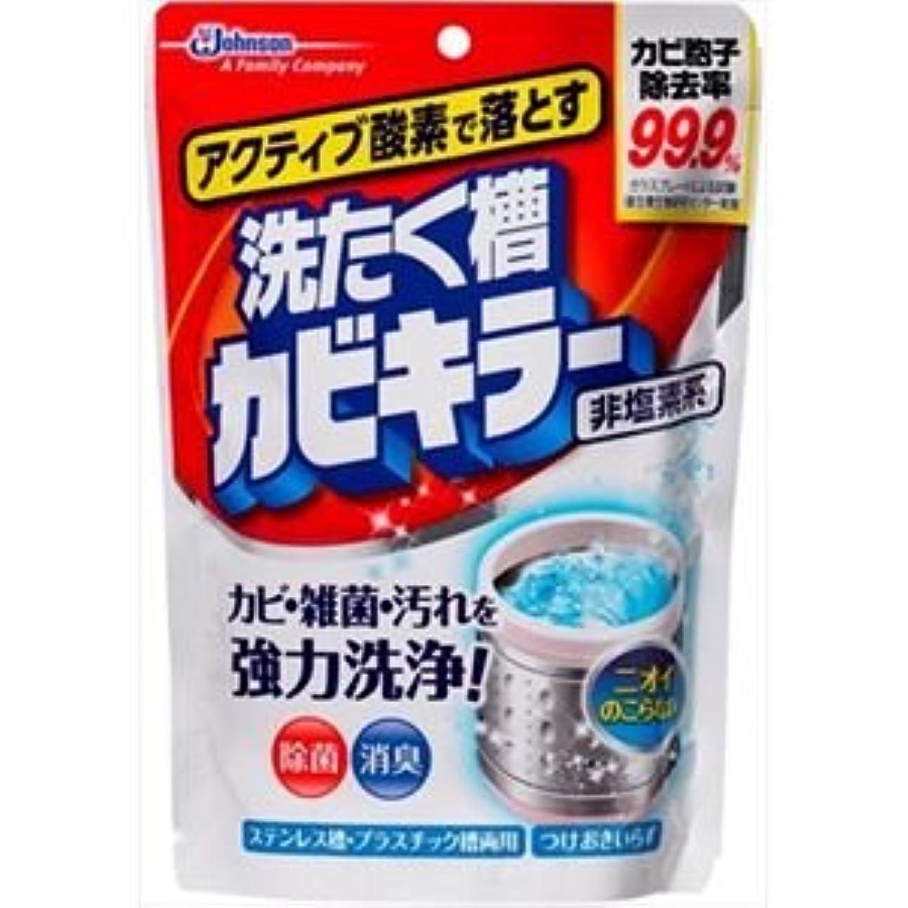 適度にオン抑圧(まとめ)ジョンソン アクティブ酸素で落とす洗濯槽カビキラー250G 【×5点セット】