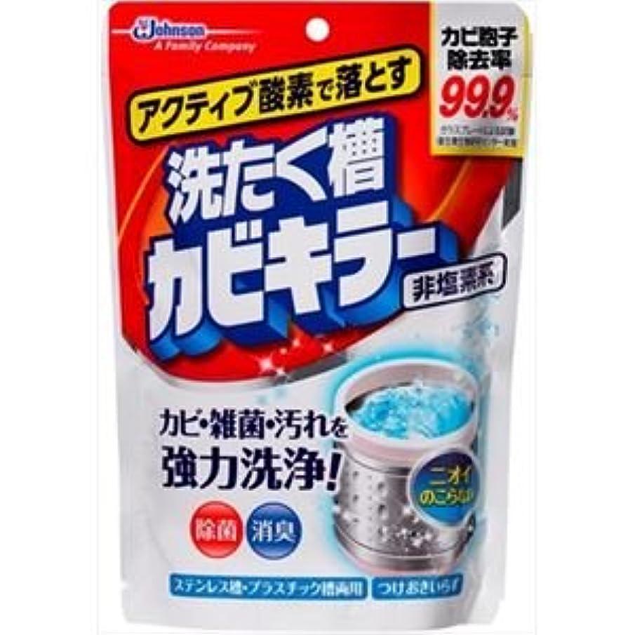 通知する人類しょっぱい(まとめ)ジョンソン アクティブ酸素で落とす洗濯槽カビキラー250G 【×5点セット】