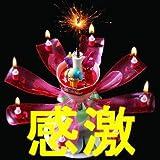 花火と音で演出 花びらが開花 ドリームキャンドルデラックス 誕生日用