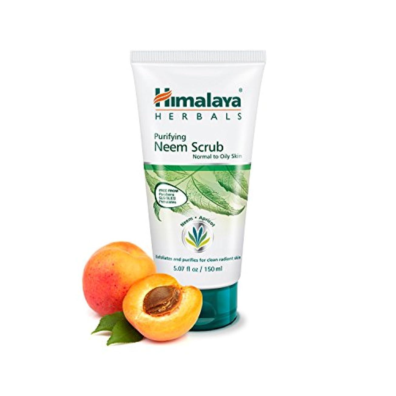 ミキサー韓国価値のないHimalaya Herbal Purifying Neem Scrub 100GM