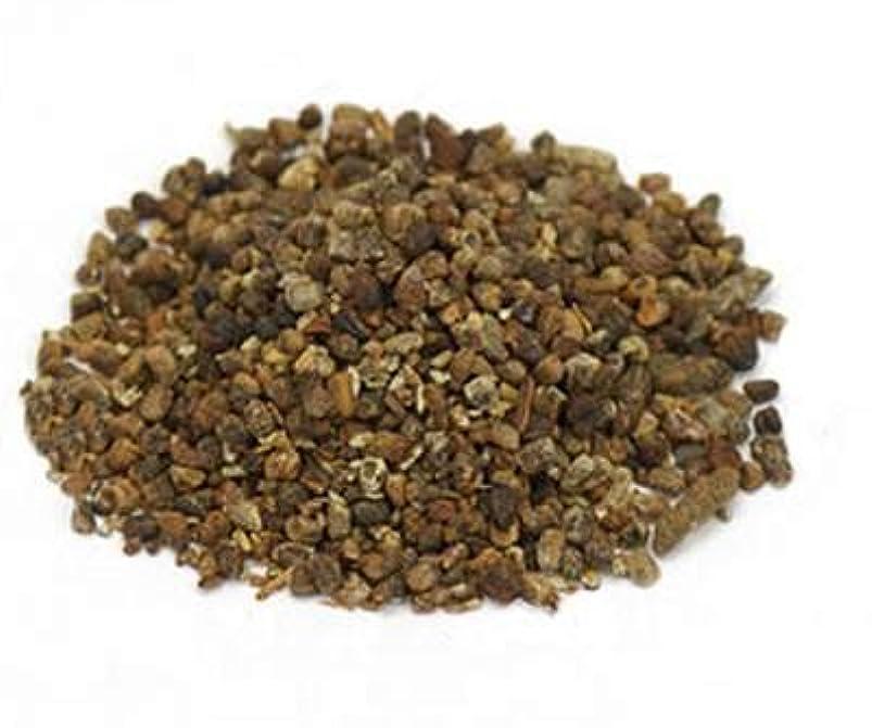 ベテラン化石東部Herbs :カルダモンシード