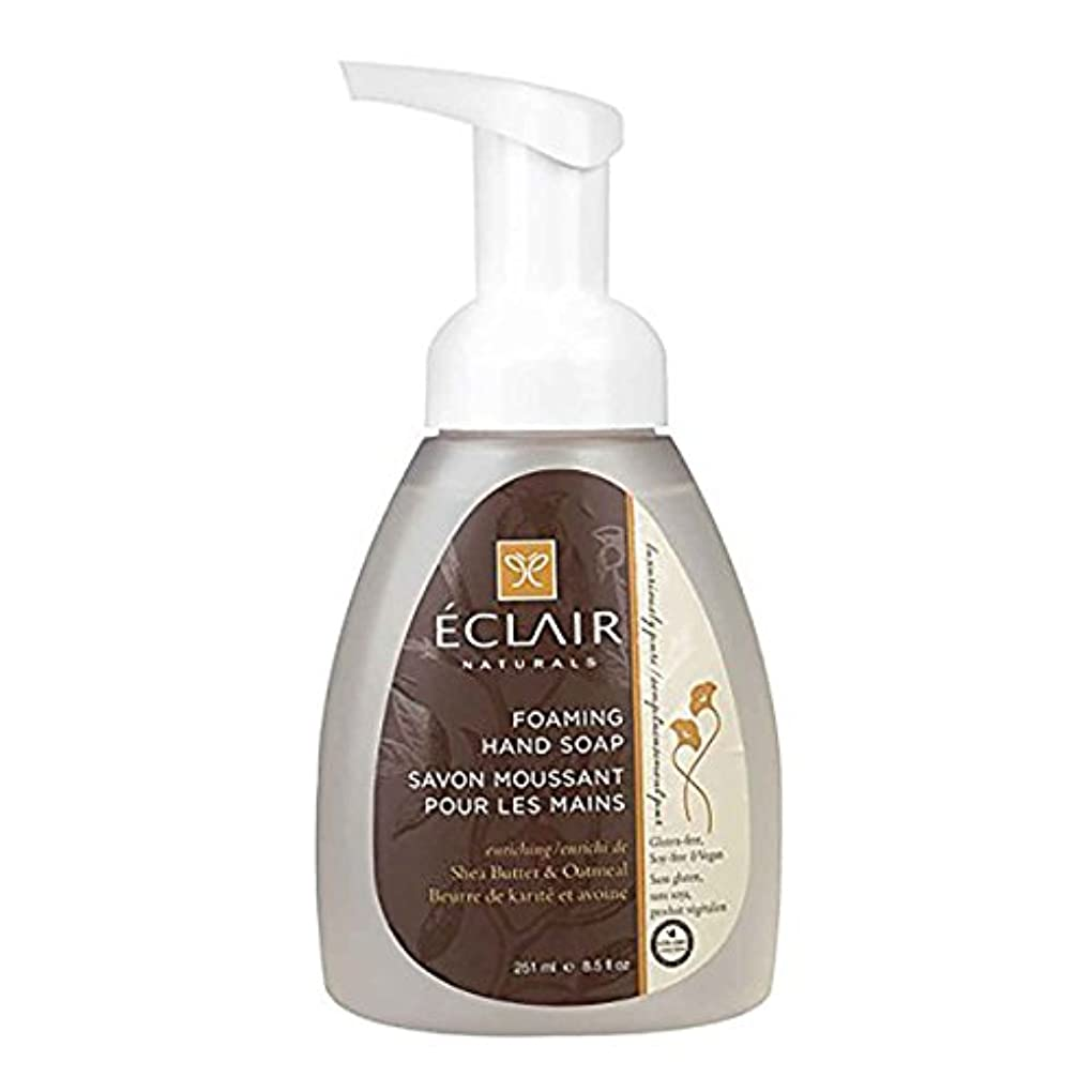 ワイヤー合唱団追い出すEclair Naturals Foaming Hand Soap - Shea Butter and Oatmeal - 12 Fl oz.