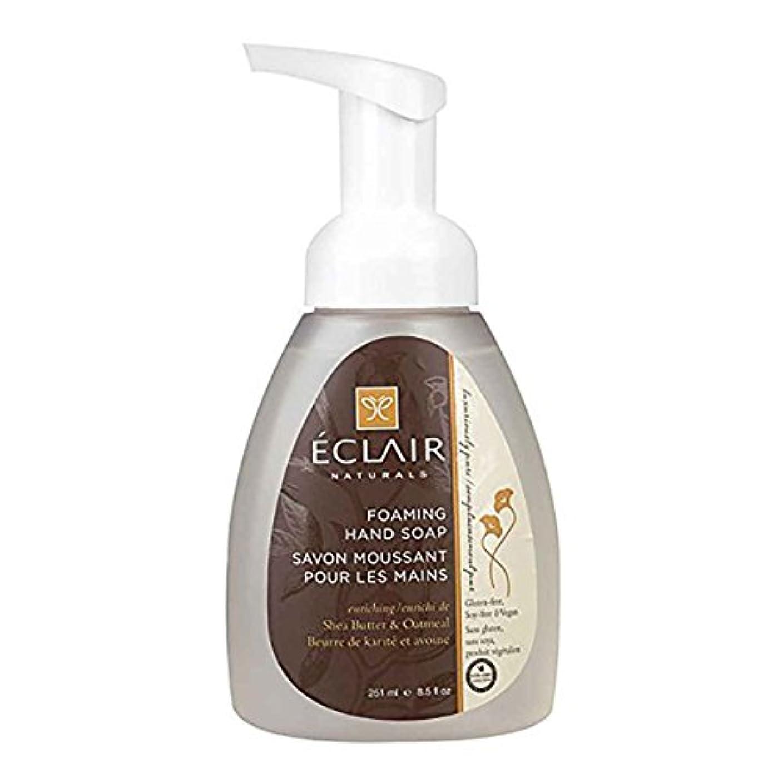 音声学多数のパステルEclair Naturals Foaming Hand Soap - Shea Butter and Oatmeal - 12 Fl oz.