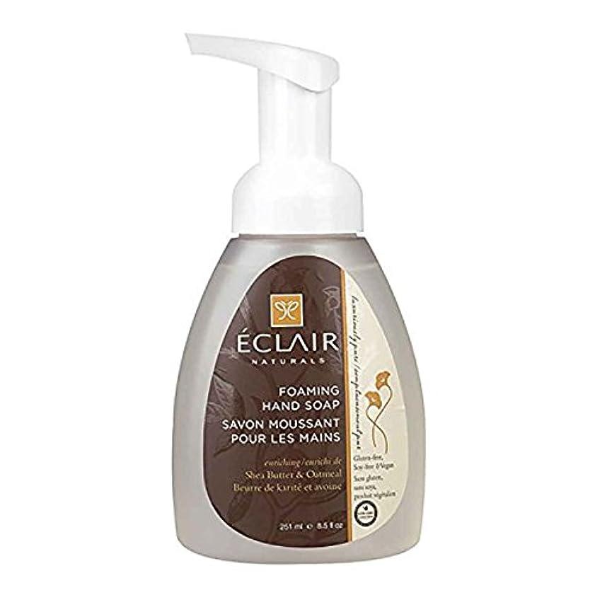 インシュレータジャズダンスEclair Naturals Foaming Hand Soap - Shea Butter and Oatmeal - 12 Fl oz.