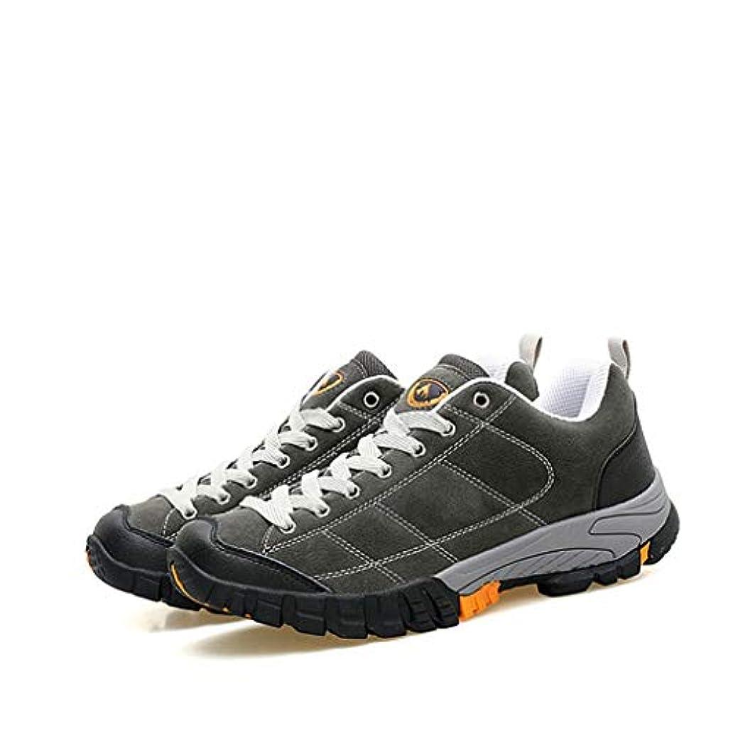 初期のトムオードリース喜劇[イグル] トレッキングシューズ メンズ 防滑 大きいサイズ 耐磨耗 防水 ローカット スニーカー 通気性 軽量 ハイキングシューズ アウトドア ライトトレッキングシューズ 山歩き 登山道 登山靴