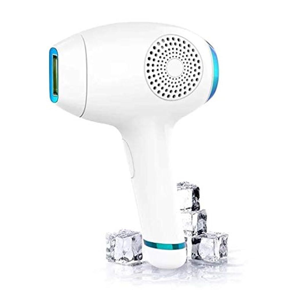 閃光乱暴な思想IPL脱毛システム、冷却ケア美容機器、パルス光IPLレーザー脱毛器、身体、顔、ビキニ、脇の下用