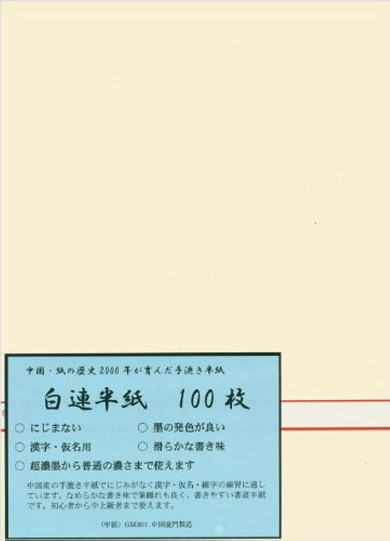 呼び起こす見えない戦略弘梅堂 漢字用半紙 白連半紙 (甲級)GW201 100枚