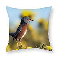 TANGANGEL鳥空花自然目に見えないジッパーのデザインと装飾ウエストクッション綿素材家の装飾40センチ×40センチ16×16インチ
