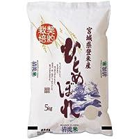 【最高ランク特A地区】宮城県登米市産 ひとめぼれ 白米 5kg 一等米