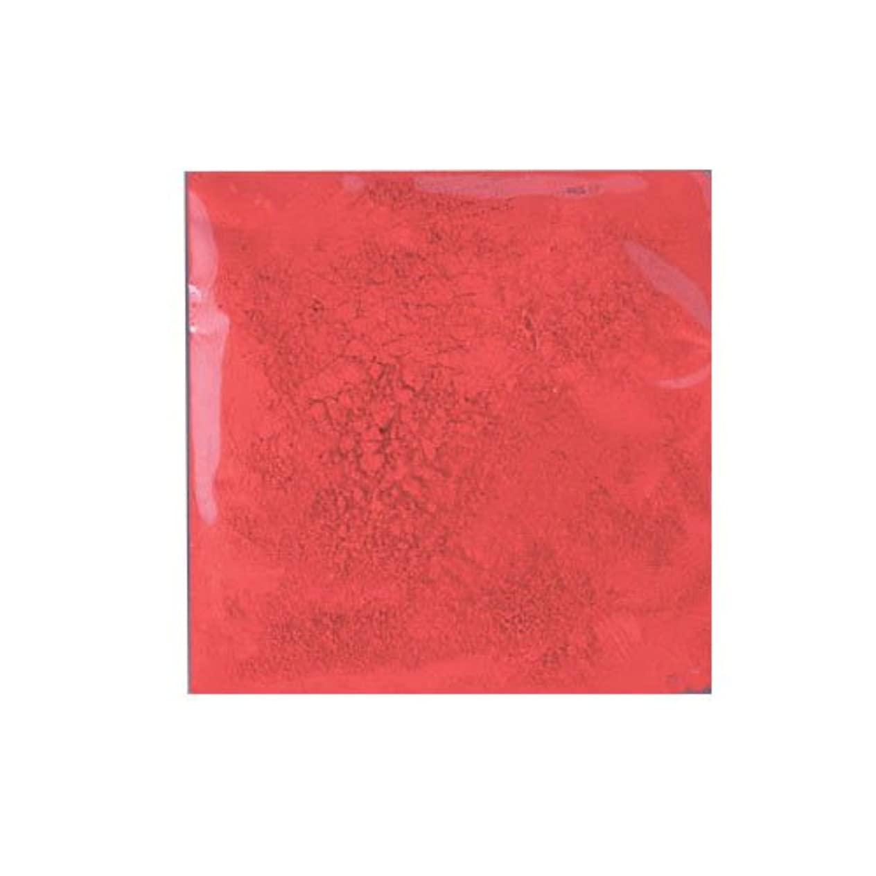 肉の変化胚ピカエース ネイル用パウダー ピカエース カラーパウダー 着色顔料 #731 ファイヤーレッド 2g アート材