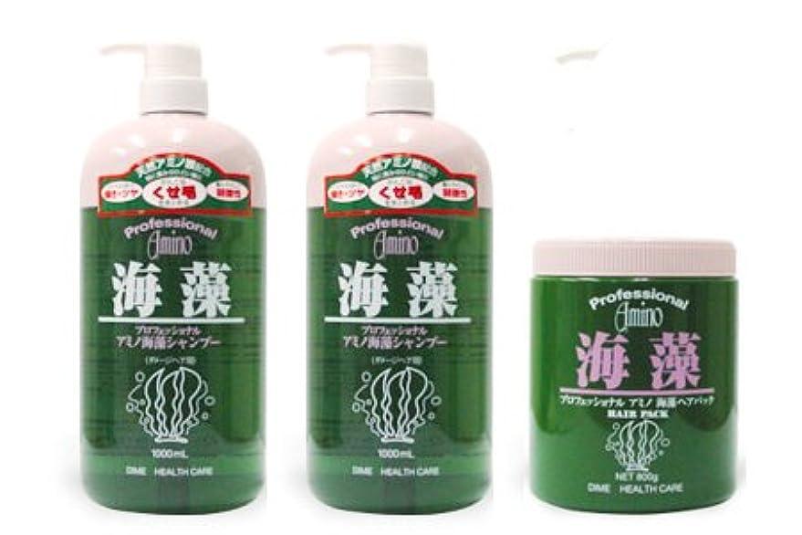使用法底下に【お得なセット】プロフェッショナルアミノ海藻シャンプー1000ml×2本 & ヘアパック800g×1個 セット