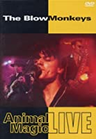 Animal Magic: Blow Monkeys Live [DVD] [Import]