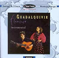 Duo Flamenco Instrumental
