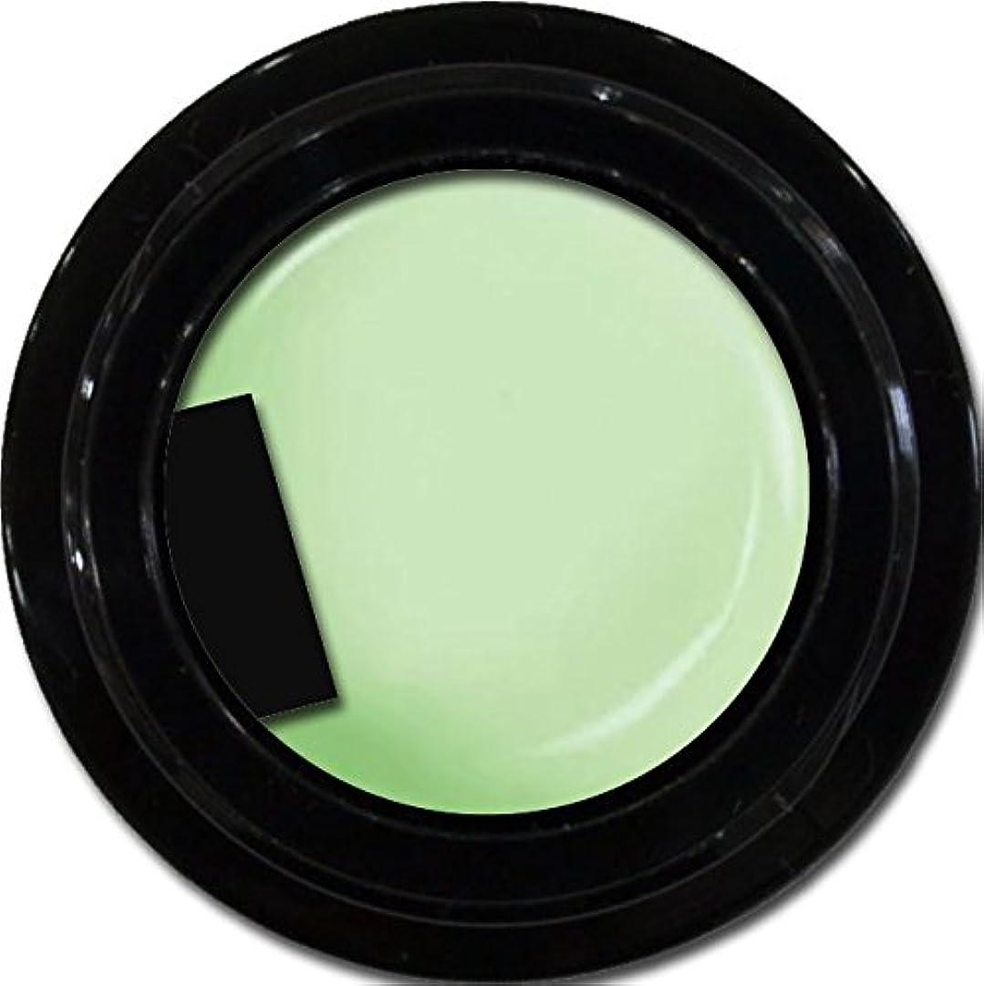 権威日常的に露骨なカラージェル enchant color gel M711 Fresh Green 3g/ マットカラージェル M711 フレッシュグリーン 3グラム