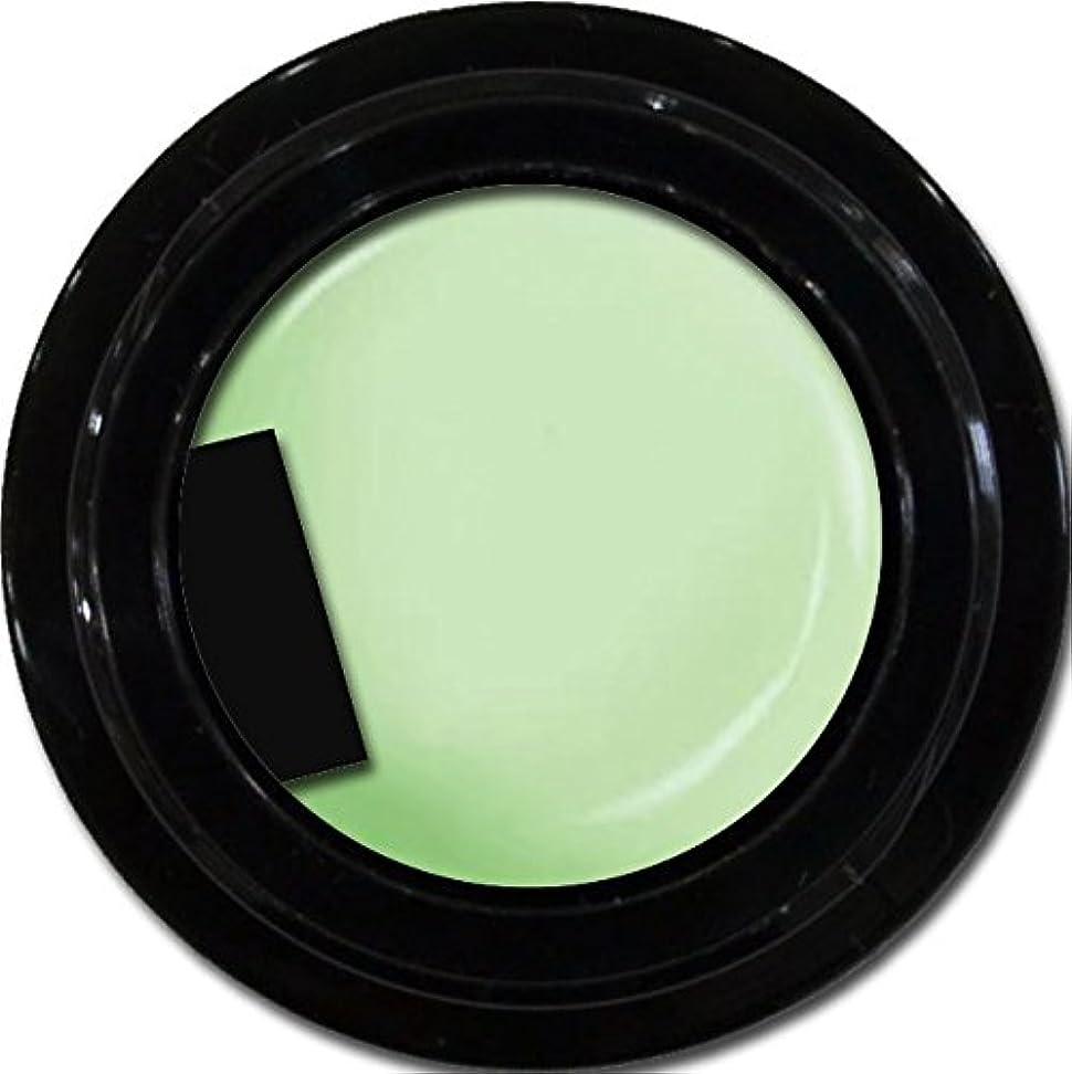 天皇未払い早熟カラージェル enchant color gel M711 Fresh Green 3g/ マットカラージェル M711 フレッシュグリーン 3グラム