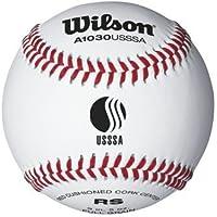 USSSA Baseballsからウィルソン – ケースof 10ダース