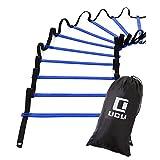 LICLI ラダー トレーニング 野球 サッカー 5m 7m 9m プレート 9枚 13枚 21枚 収納袋付き 3カラー 「 連結可能 スピードラダー 」「 瞬発力 敏捷性 アップ 」「 フットサル テニス 練習 」 トレーニングラダー ladder (ブルー, 9m)