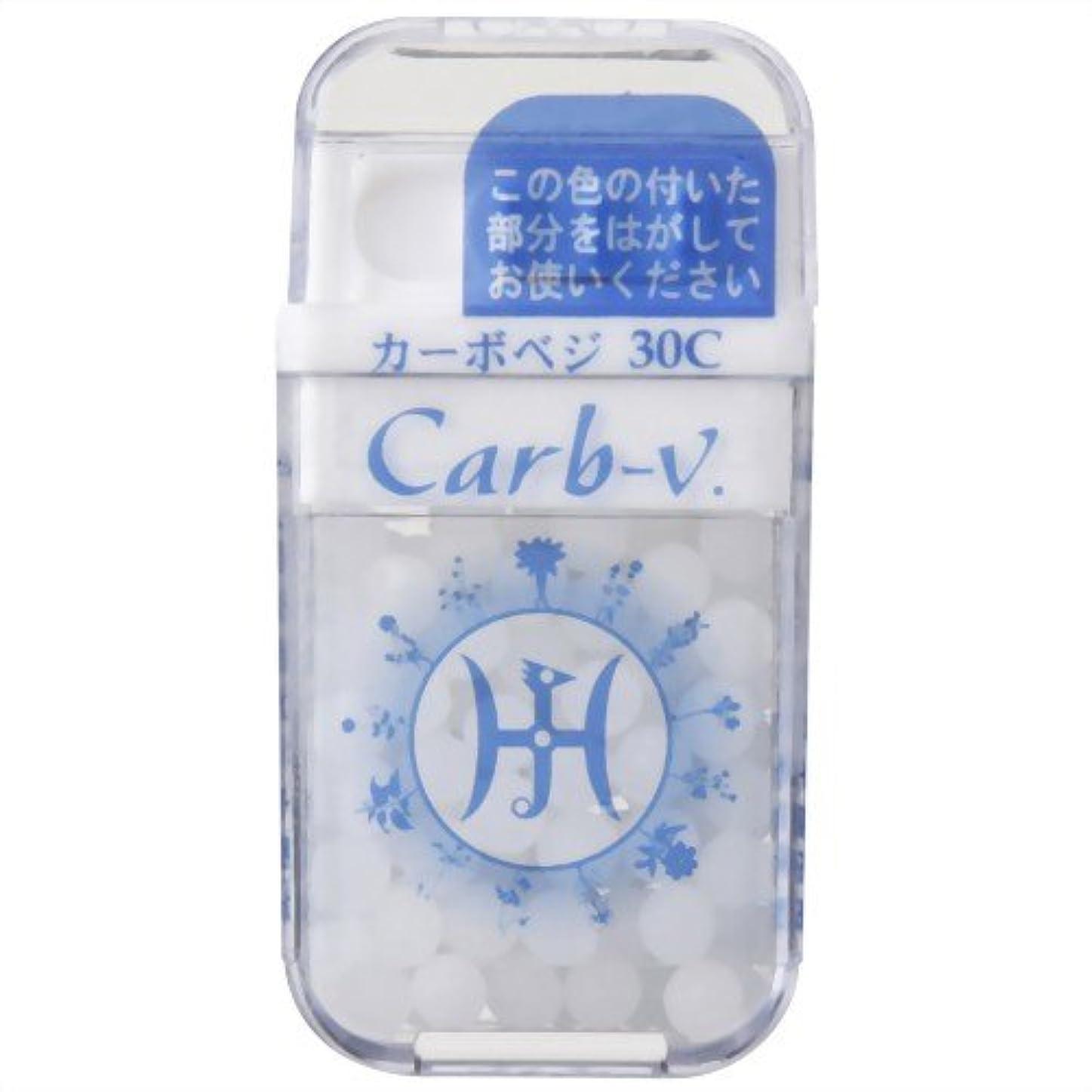 植物学エクステント避難するホメオパシージャパンレメディー Carb-v.  カーボベジ 30C (大ビン)