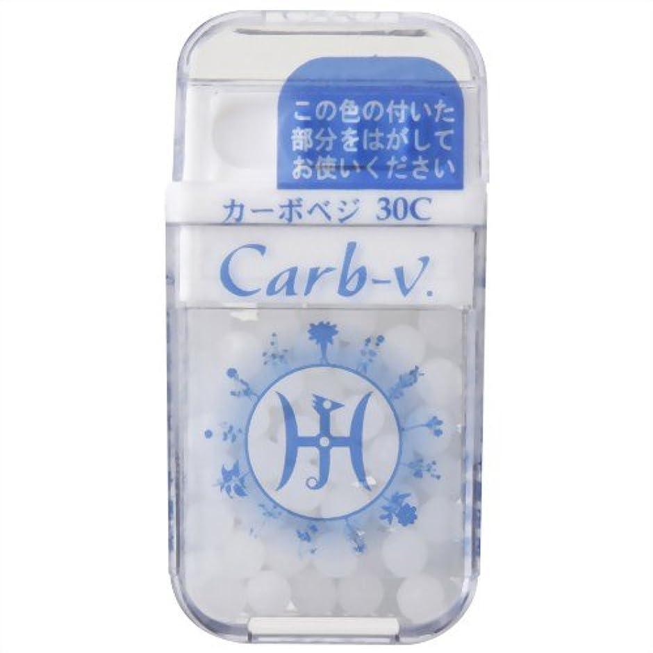 レンズ動物園団結ホメオパシージャパンレメディー Carb-v.  カーボベジ 30C (大ビン)