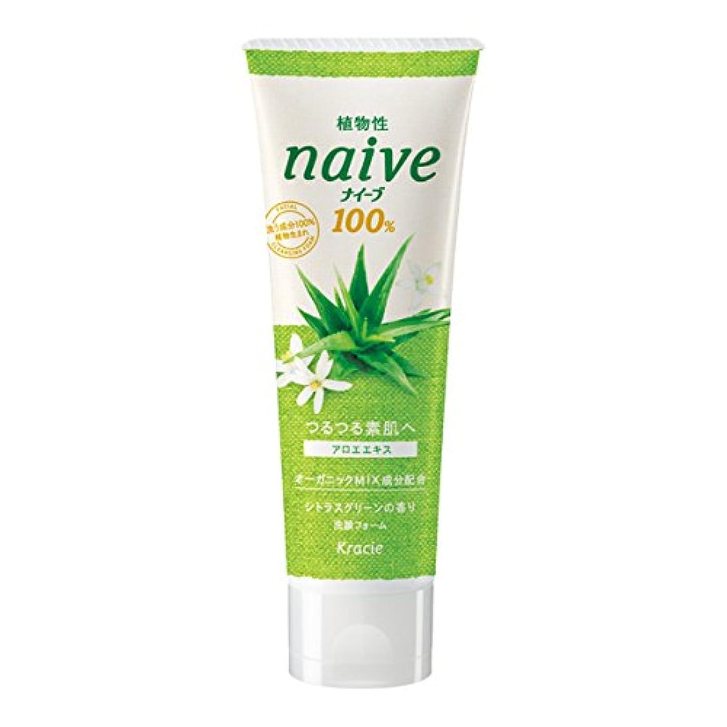 麦芽ブースト妨げるナイーブ 洗顔フォーム アロエエキス配合 シトラスグリーンの香り 110g