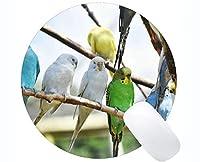 円形のゲームパッドの習慣、色の鳥の多彩な性質のマウスマット