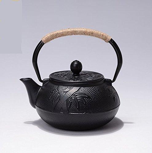 RUIKA Japanese Tetsubin Tea Ke...