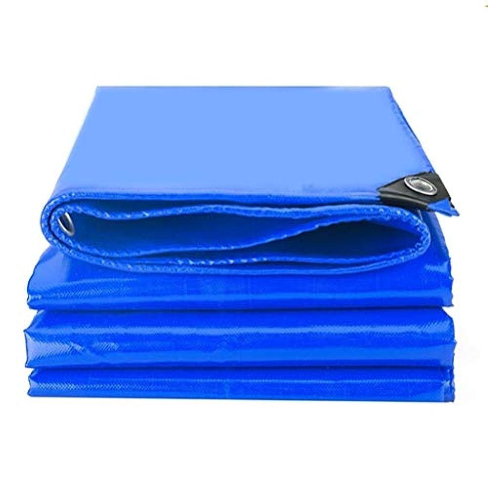 ジェム薬評判防水シートリノリウム 軽量ターポリン、高密度ポリエチレン、ダブルラミネートブルー/グリーン100%防水、UVカット ZHANGQIANG (Color : A, Size : 6*6m)