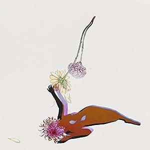 The Far Field [帯解説・歌詞対訳 / ボーナストラック1曲収録 / 国内盤] (4AD0001CDJ)