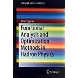 Functional Analysis and Optimization Methods in Hadron Physics (SpringerBriefs in Physics)