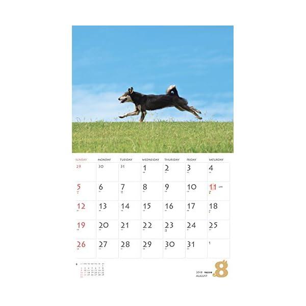 カレンダー2018 柴犬 (ヤマケイカレンダ...の紹介画像10
