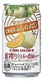 タカラCANチューハイ「直搾り」日本の農園から <北海道産ふらのメロン>350ml 1ケース24本入り【期間限定】