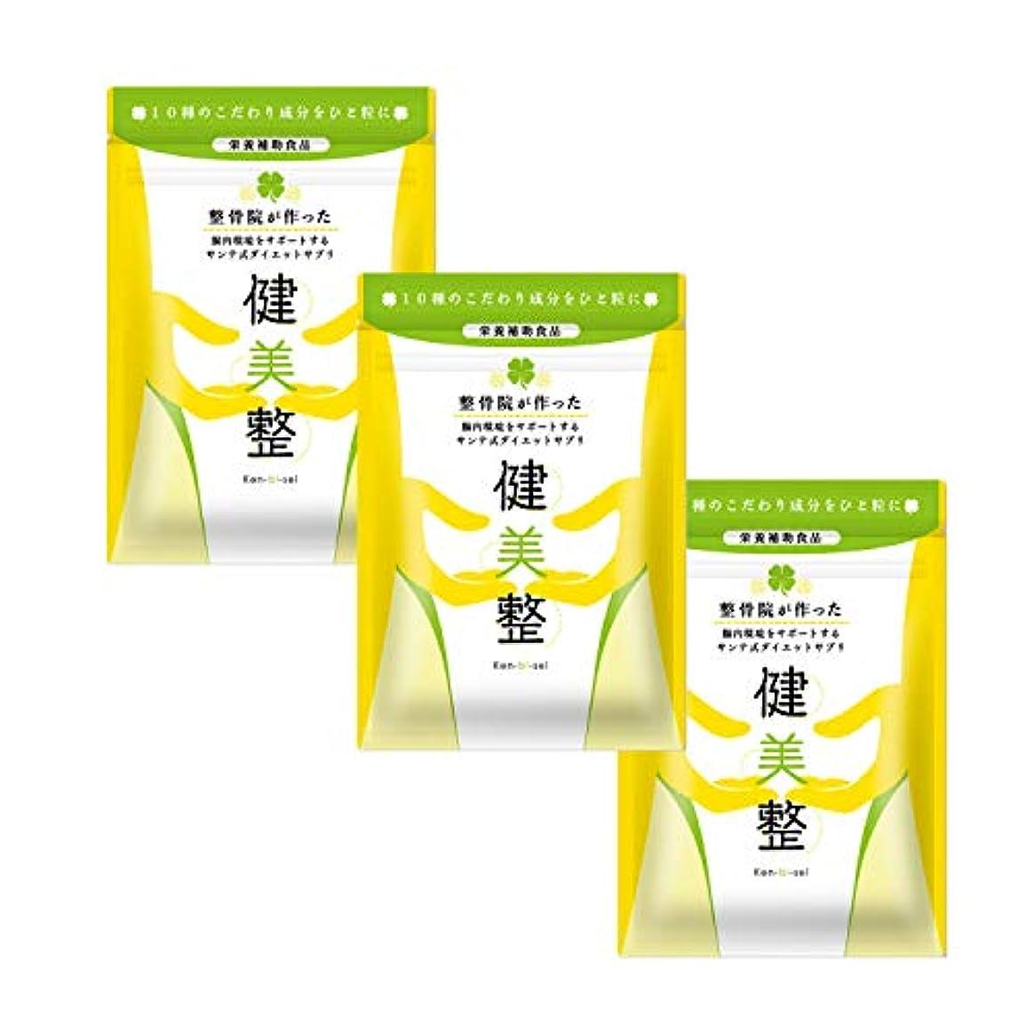 ペナルティ猫背天井サプリメント ダイエット 酵素 腸内 健美整 人気 腸内環境 60粒1か月分 (3)