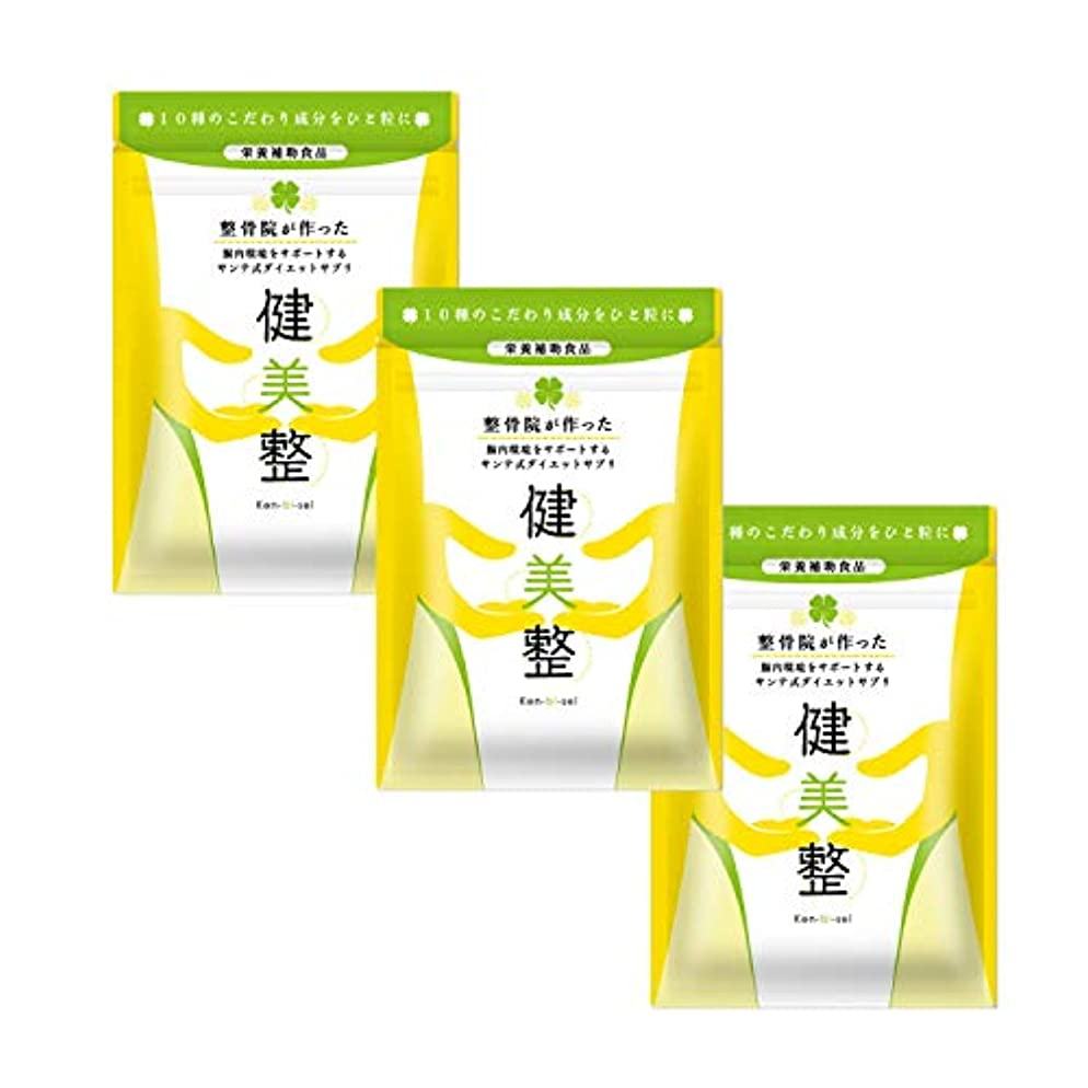 ミット許す聖書サプリメント ダイエット 酵素 腸内 健美整 人気 腸内環境 60粒1か月分 (3)